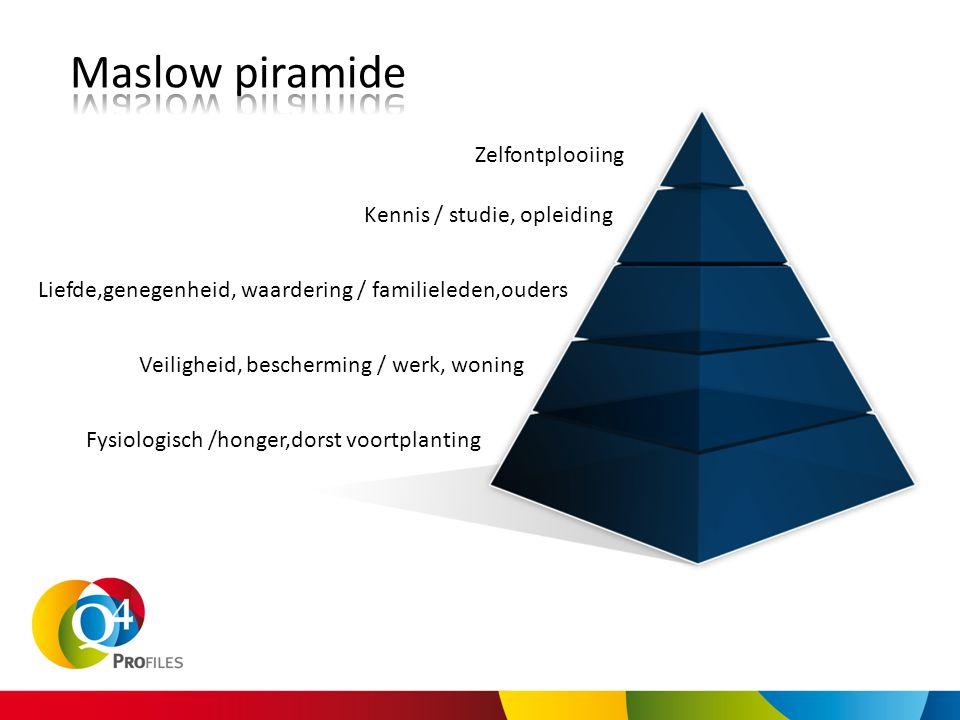 Maslow piramide Zelfontplooiing Kennis / studie, opleiding