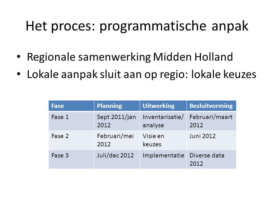 Het proces: programmatische anpak