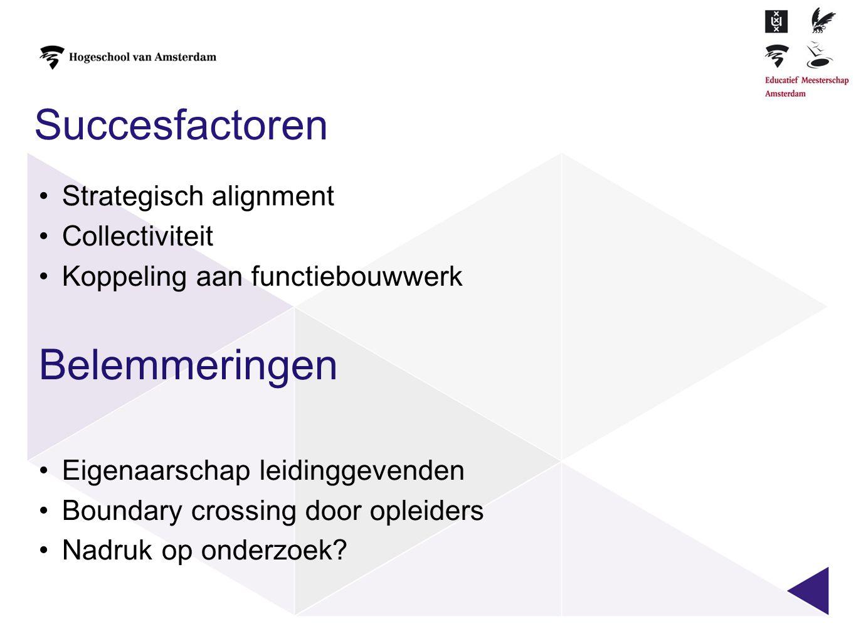 Succesfactoren Belemmeringen Strategisch alignment Collectiviteit