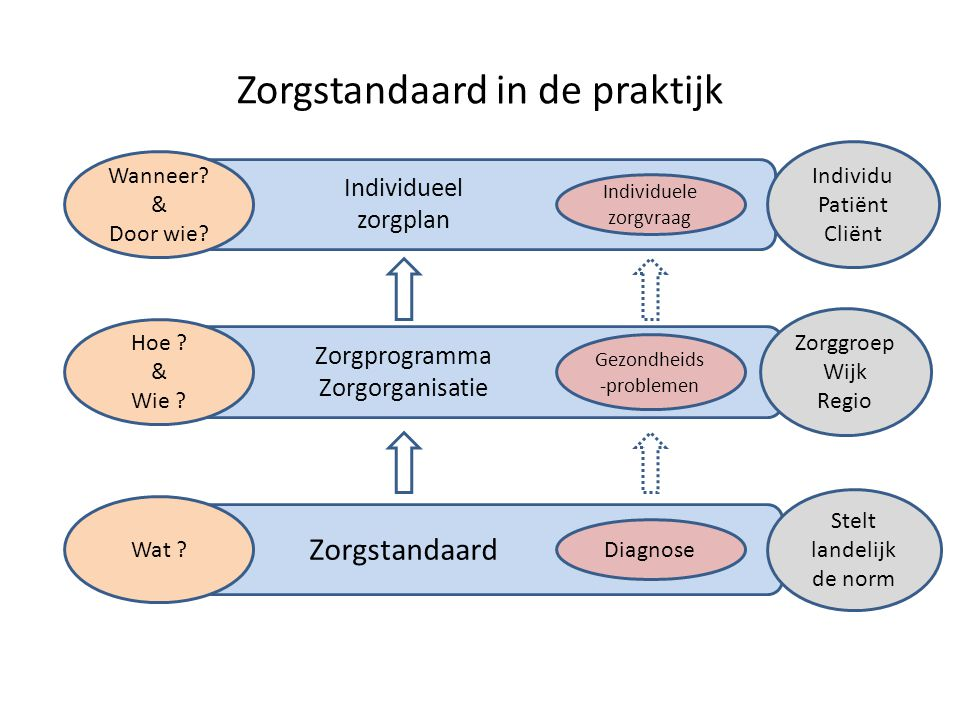 Zorgstandaard in de praktijk