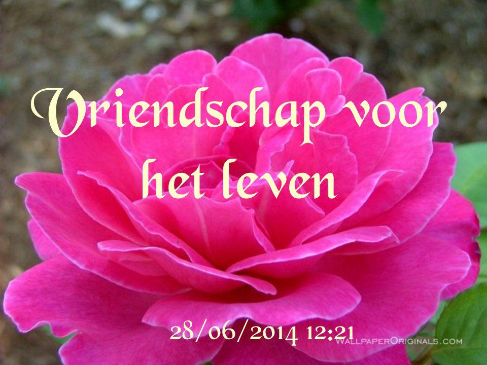 Vriendschap voor het leven
