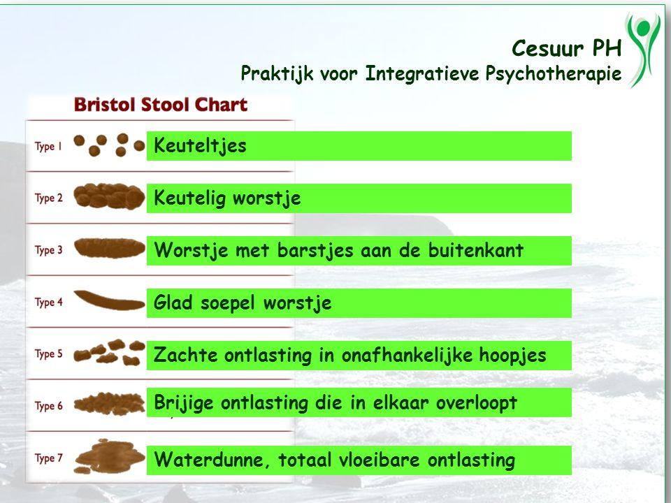 Cesuur PH Praktijk voor Integratieve Psychotherapie Keuteltjes