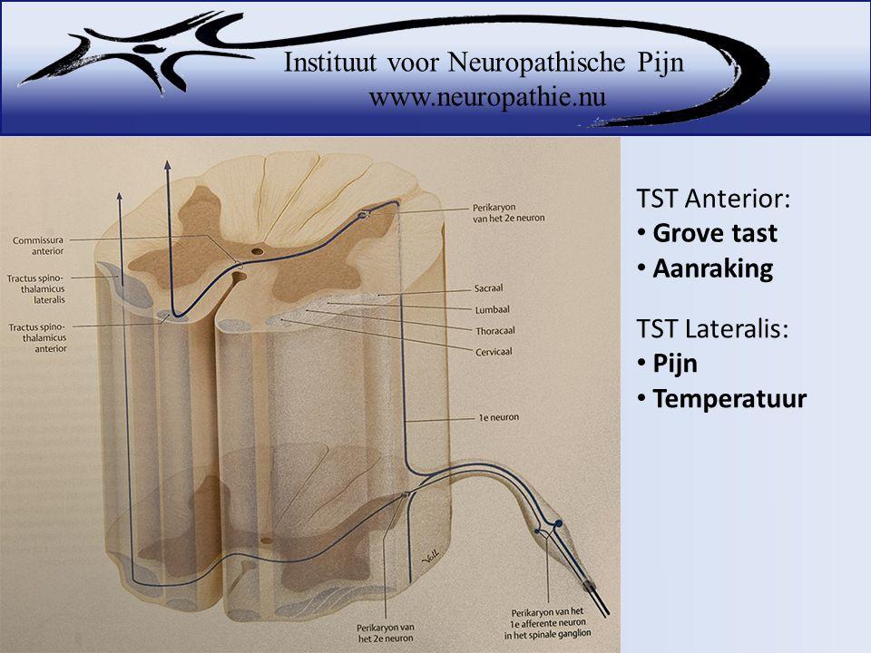 TST Anterior: Grove tast Aanraking TST Lateralis: Pijn Temperatuur