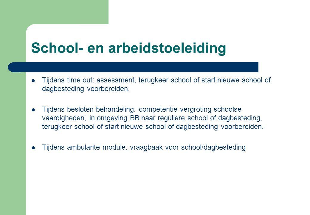 School- en arbeidstoeleiding