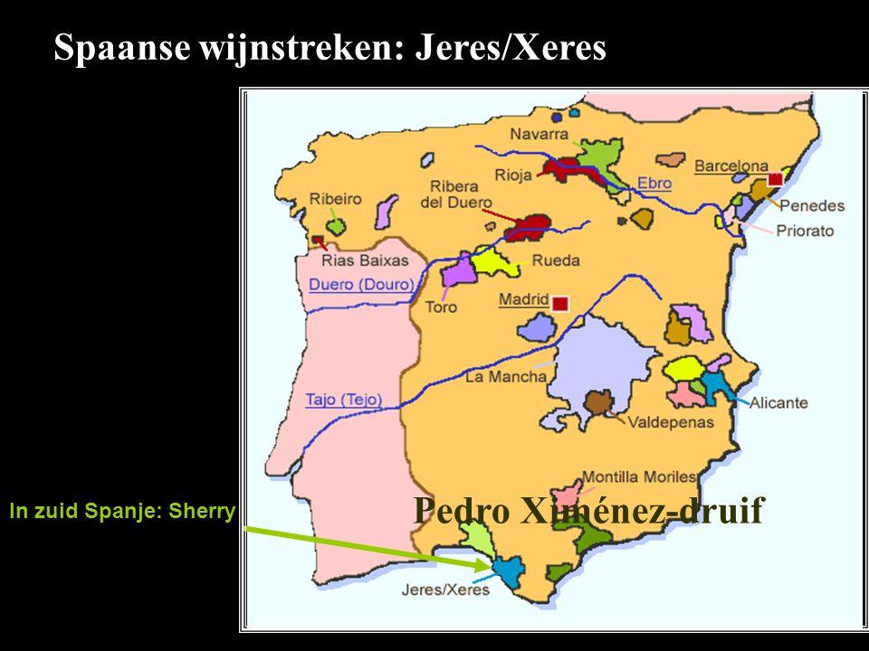 Spaanse wijnstreken: Jeres/Xeres