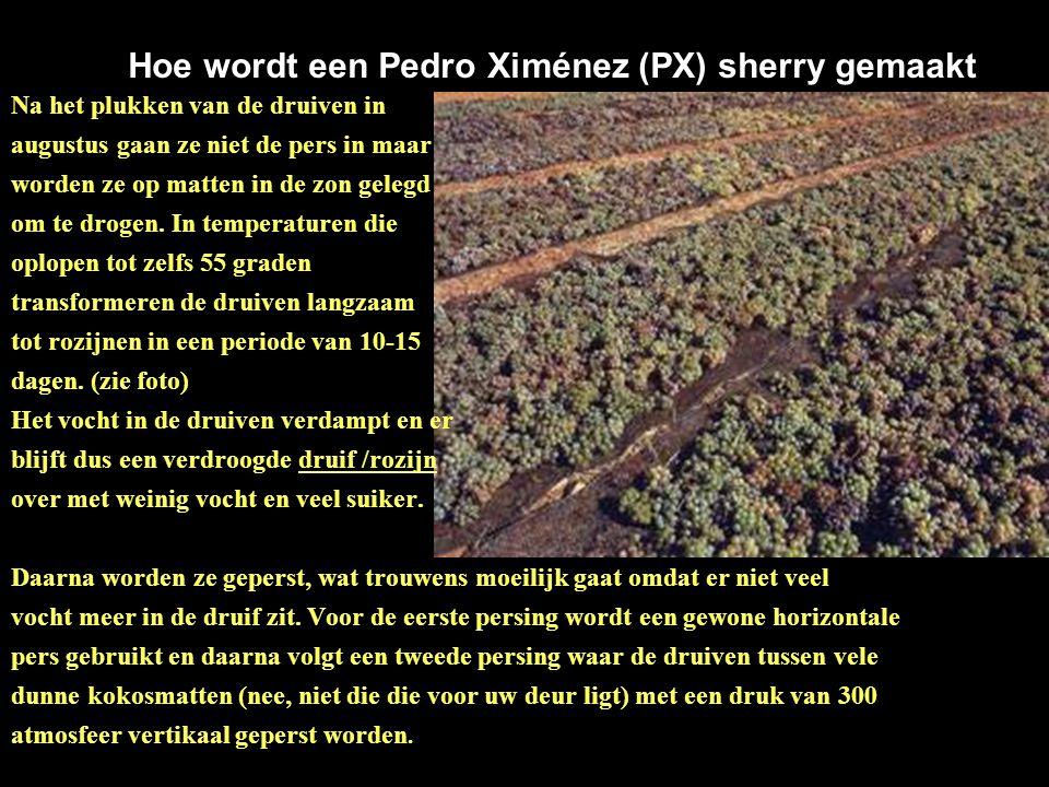 Hoe wordt een Pedro Ximénez (PX) sherry gemaakt