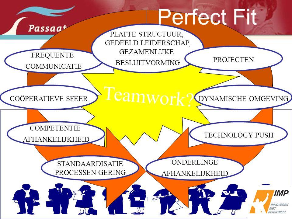 Perfect Fit Teamwork PLATTE STRUCTUUR, GEDEELD LEIDERSCHAP,
