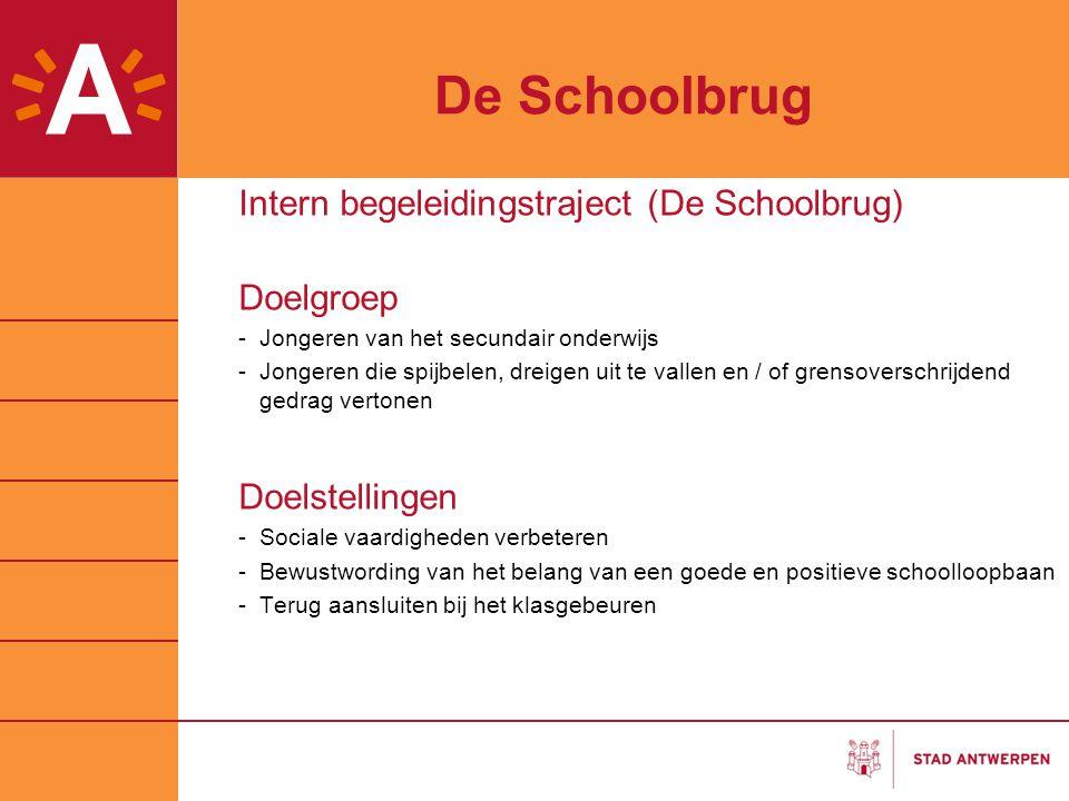 De Schoolbrug Intern begeleidingstraject (De Schoolbrug) Doelgroep