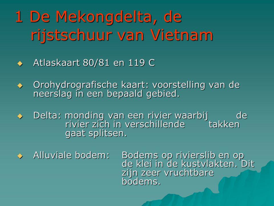 1 De Mekongdelta, de rijstschuur van Vietnam