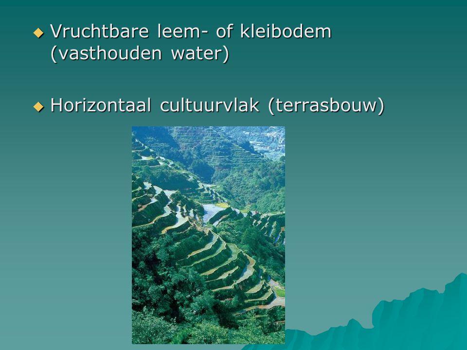 Vruchtbare leem- of kleibodem (vasthouden water)