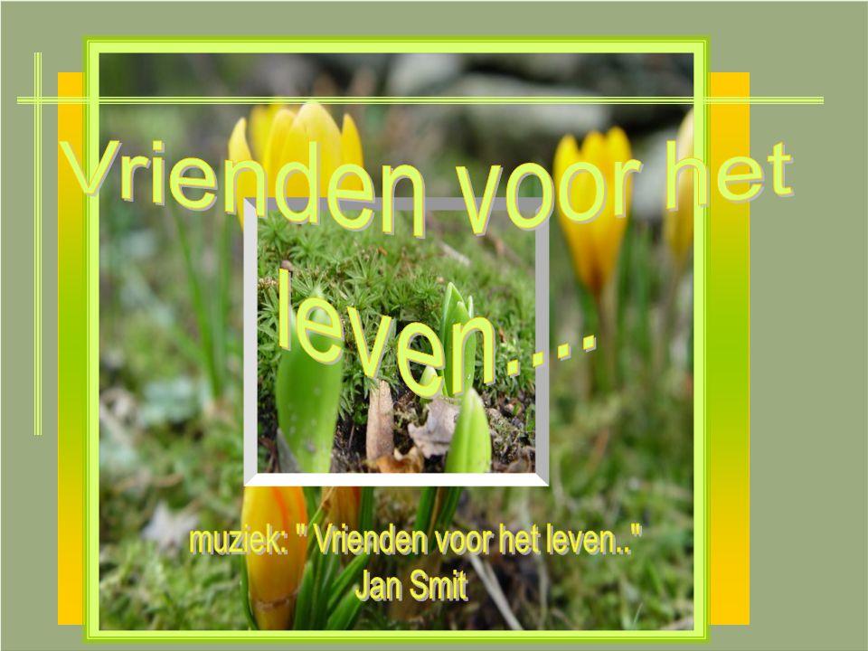 muziek: Vrienden voor het leven..