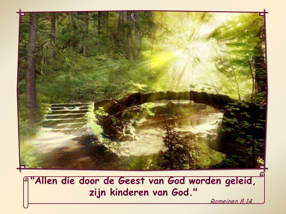 Allen die door de Geest van God worden geleid,