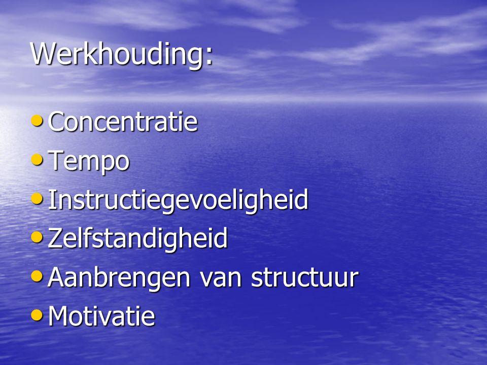 Werkhouding: Concentratie Tempo Instructiegevoeligheid Zelfstandigheid