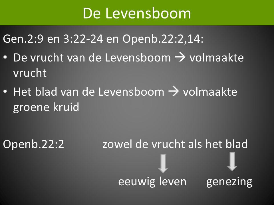 De Levensboom Gen.2:9 en 3:22-24 en Openb.22:2,14: