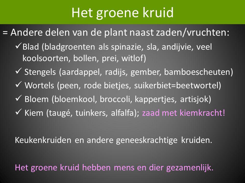 Het groene kruid = Andere delen van de plant naast zaden/vruchten: