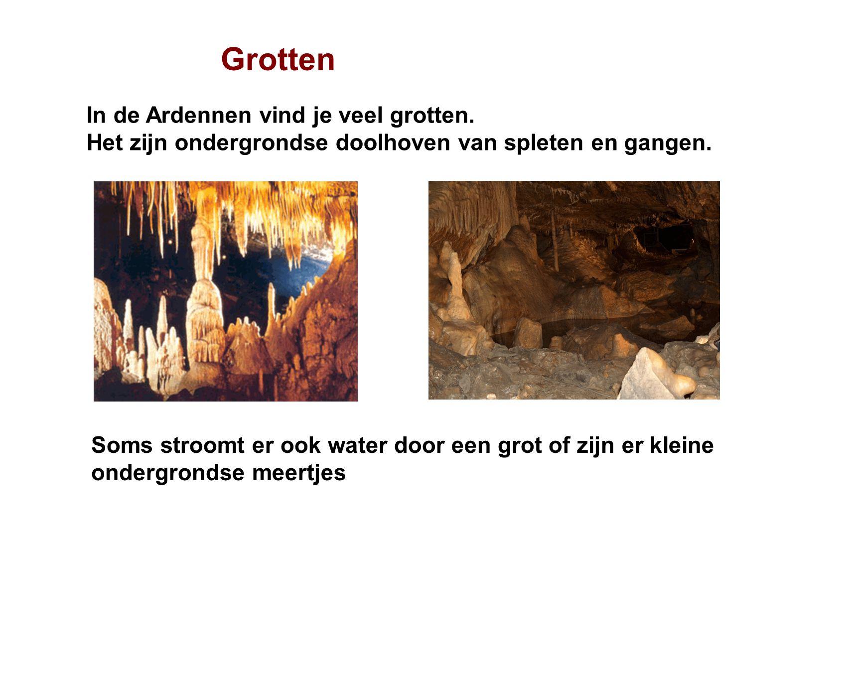 Grotten In de Ardennen vind je veel grotten.