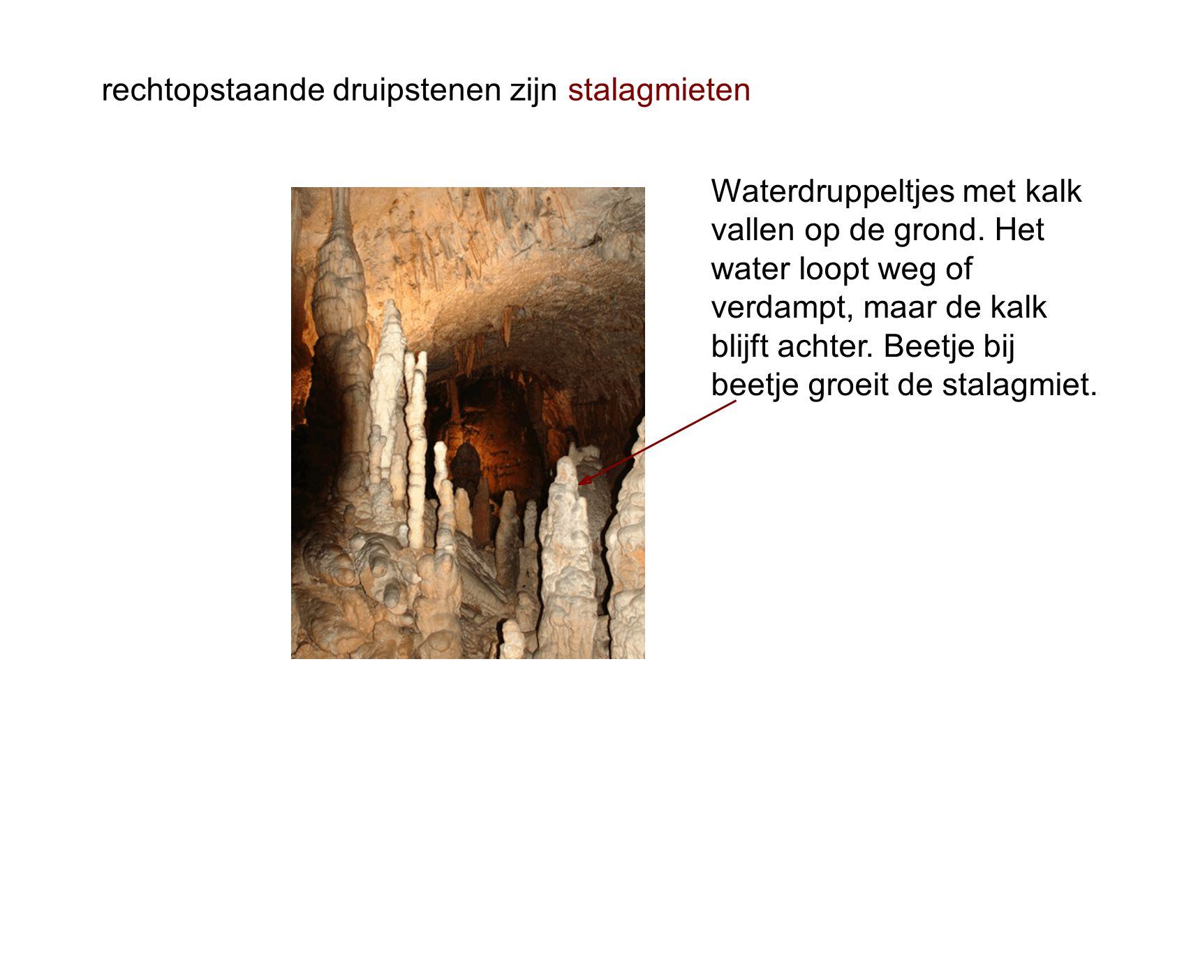 rechtopstaande druipstenen zijn stalagmieten