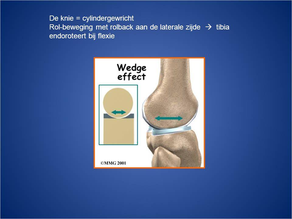 De knie = cylindergewricht