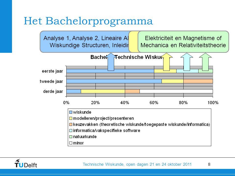 Het Bachelorprogramma