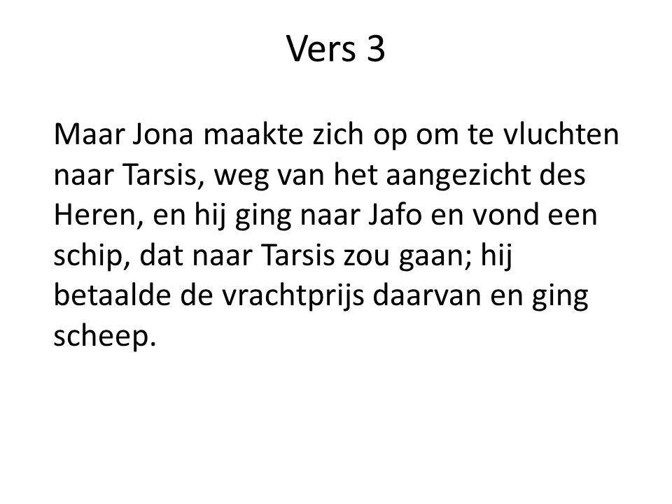 Vers 3