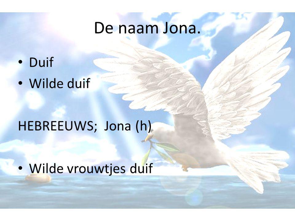 De naam Jona. Duif Wilde duif HEBREEUWS; Jona (h) Wilde vrouwtjes duif