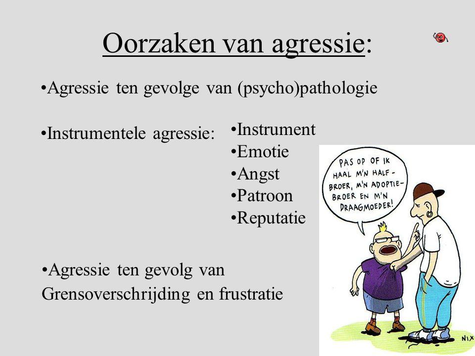 Oorzaken van agressie: