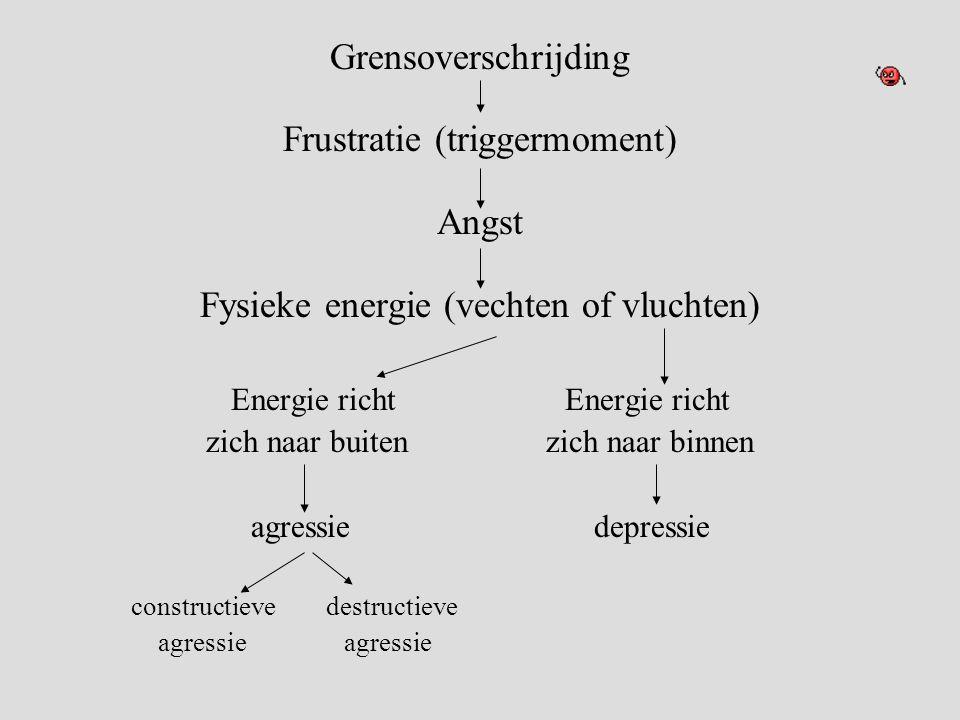 Frustratie (triggermoment) Angst Fysieke energie (vechten of vluchten)