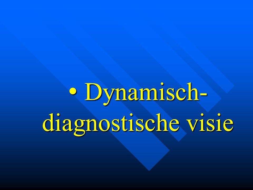 Dynamisch- diagnostische visie