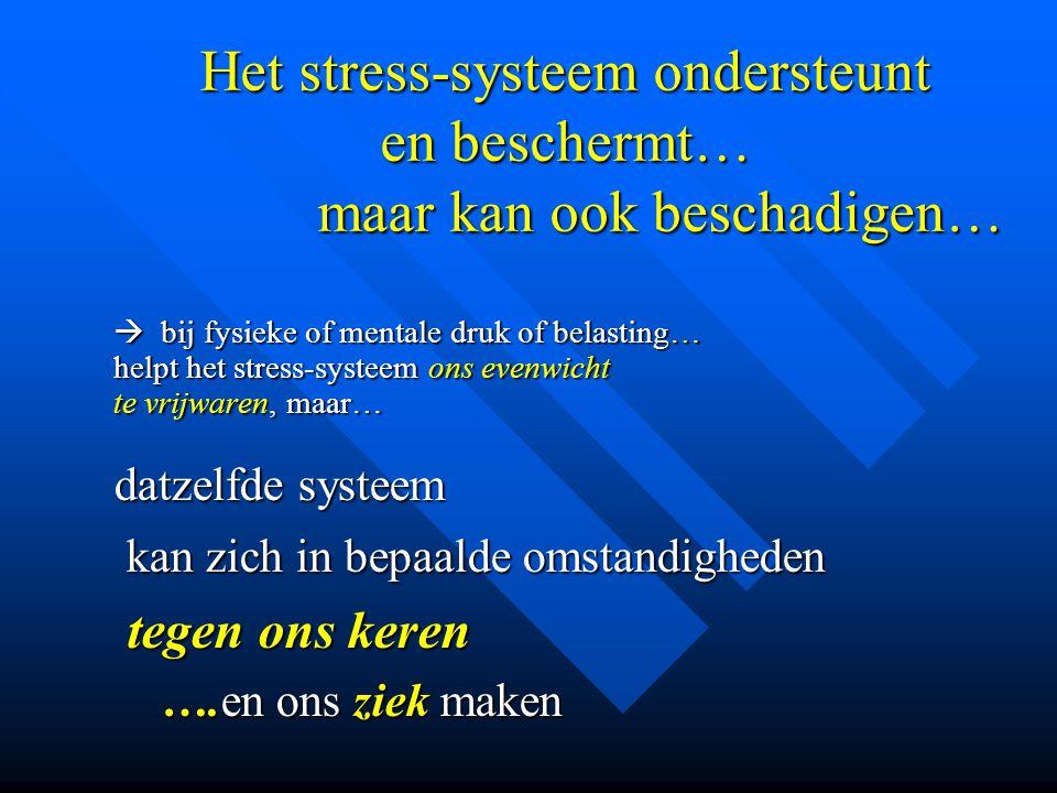 Het stress-systeem ondersteunt en beschermt… maar kan ook beschadigen…