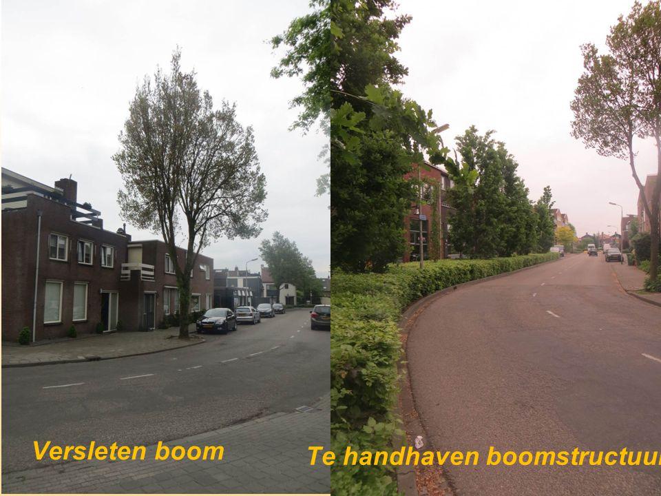 Te handhaven boomstructuur