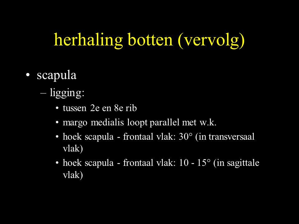 herhaling botten (vervolg)
