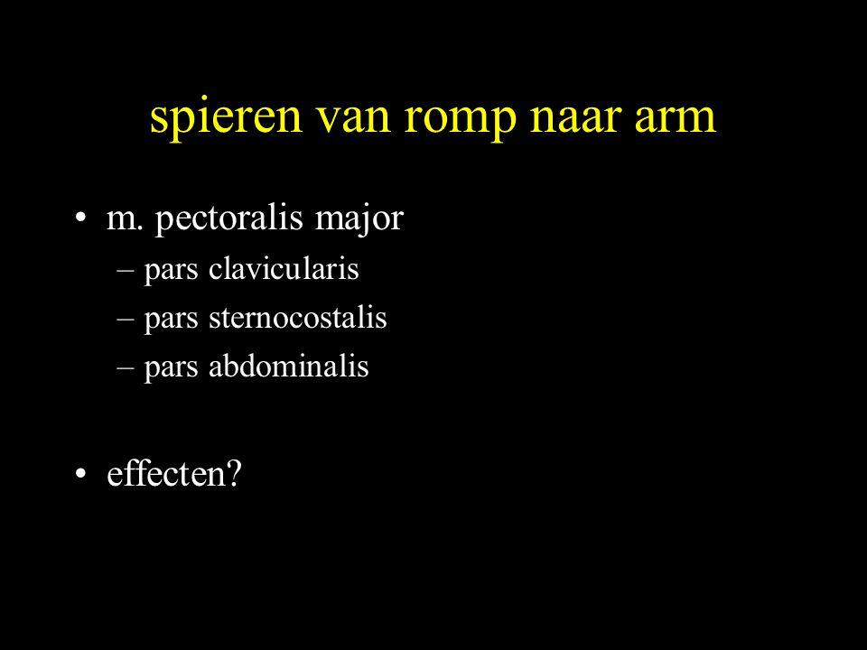spieren van romp naar arm