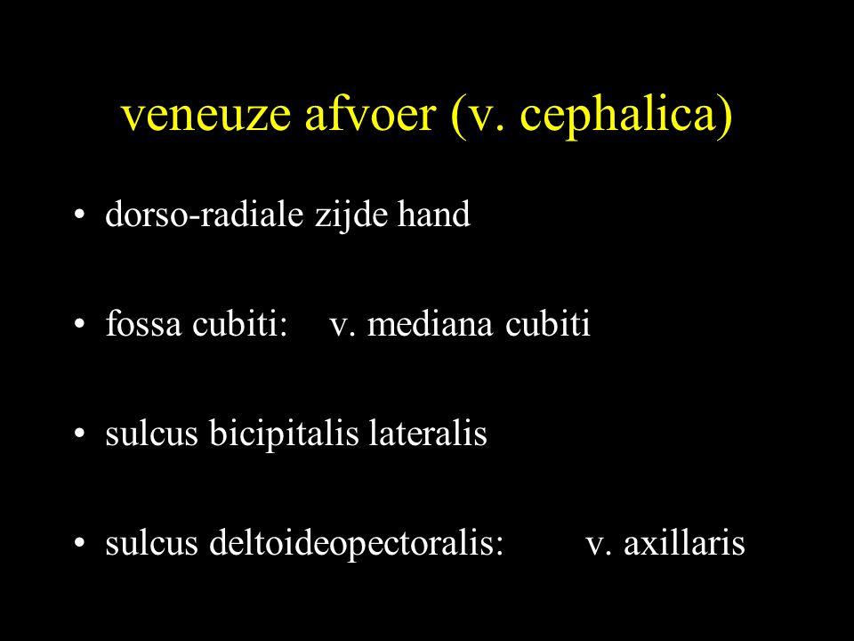 veneuze afvoer (v. cephalica)