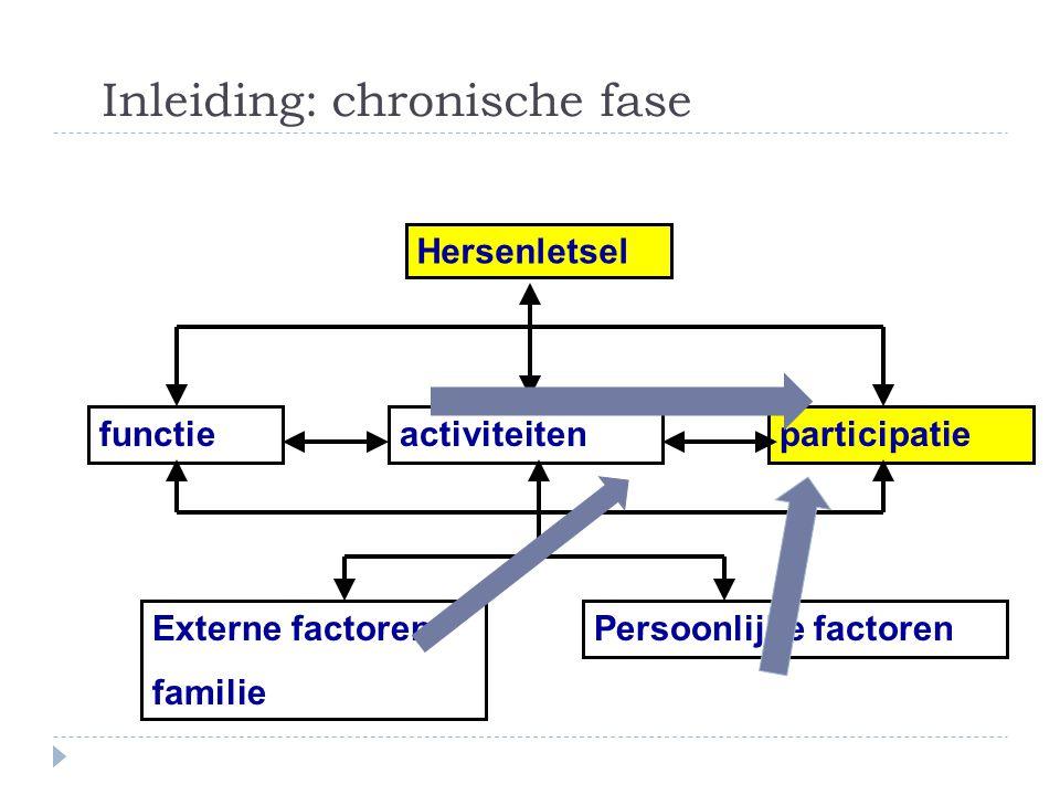 Inleiding: chronische fase