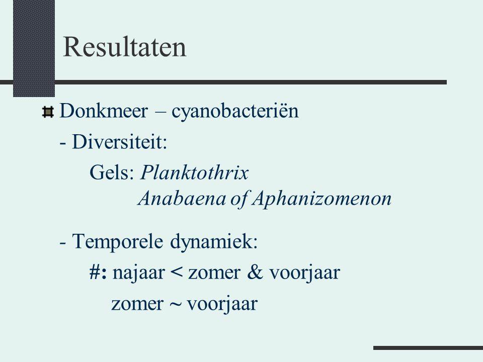 Resultaten Donkmeer – cyanobacteriën - Diversiteit: