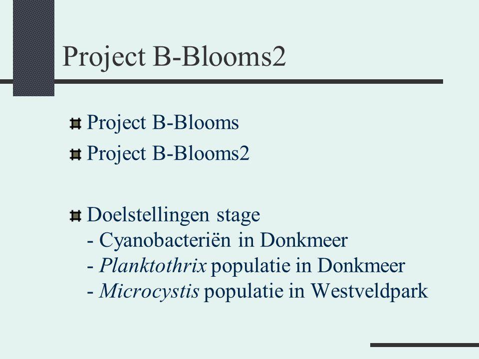 Project B-Blooms2 Project B-Blooms Project B-Blooms2