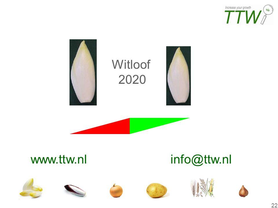 Einde Witloof 2020 www.ttw.nl info@ttw.nl