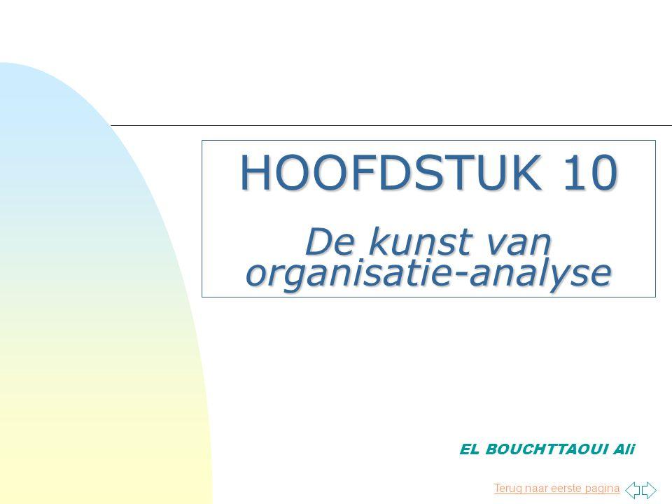 HOOFDSTUK 10 De kunst van organisatie-analyse