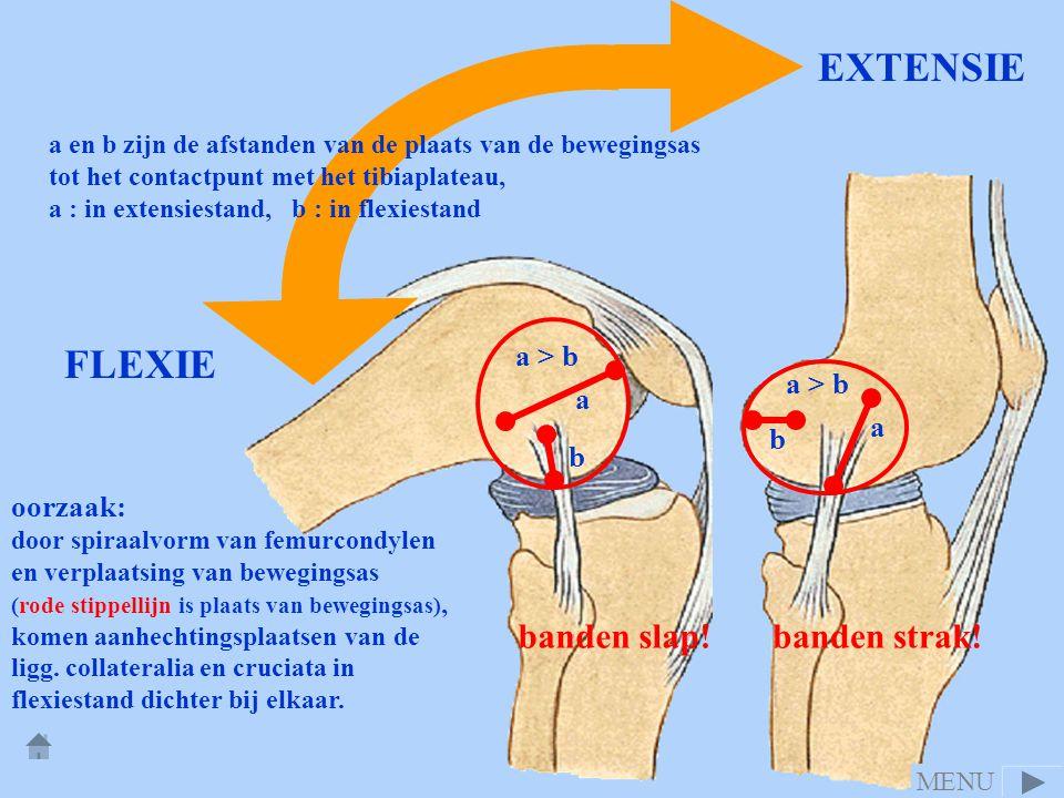 EXTENSIE FLEXIE banden strak! banden slap! a > b a > b a a b b