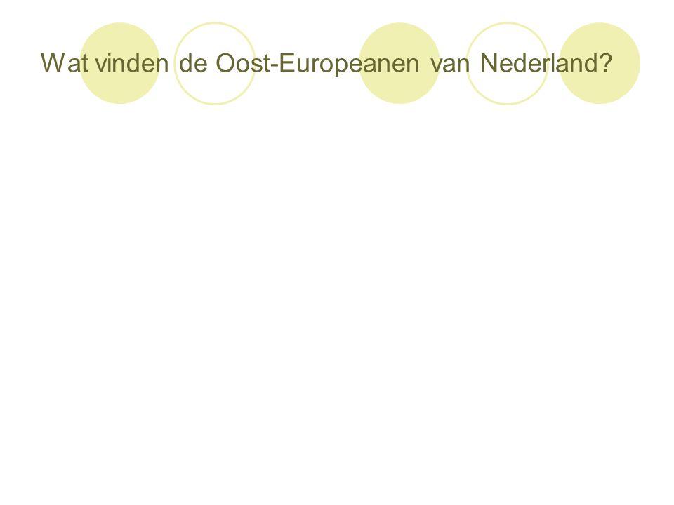 Wat vinden de Oost-Europeanen van Nederland