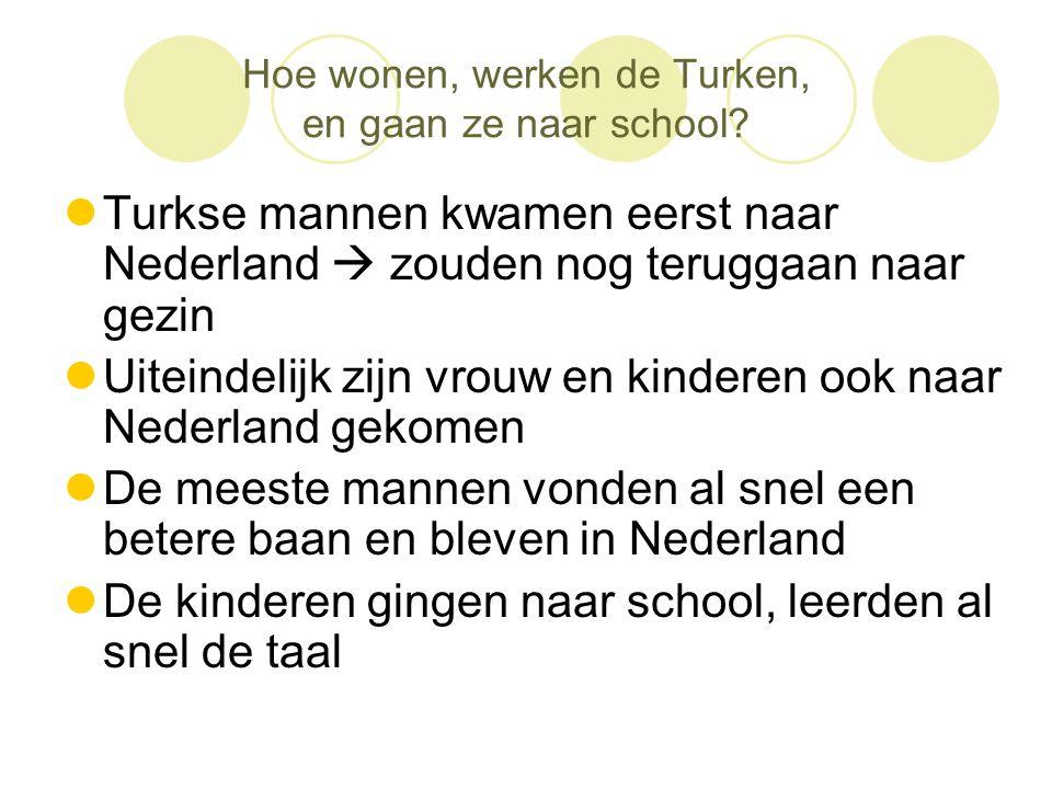 Hoe wonen, werken de Turken, en gaan ze naar school