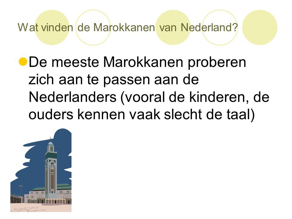 Wat vinden de Marokkanen van Nederland