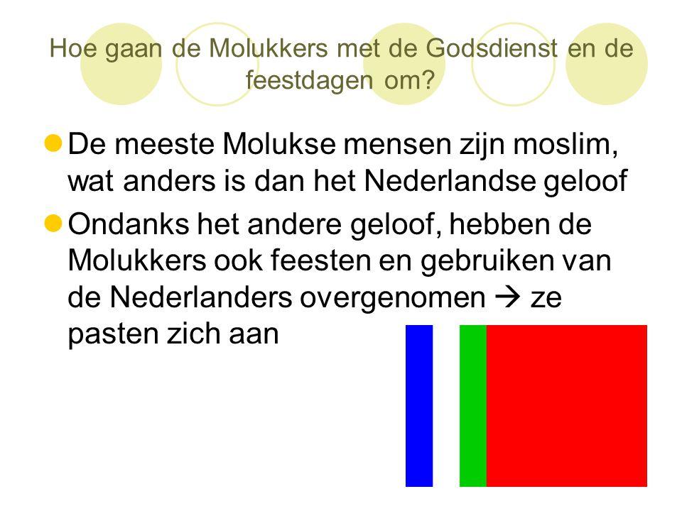 Hoe gaan de Molukkers met de Godsdienst en de feestdagen om