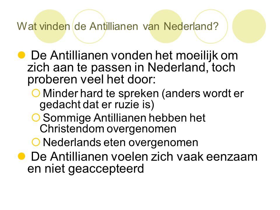 Wat vinden de Antillianen van Nederland