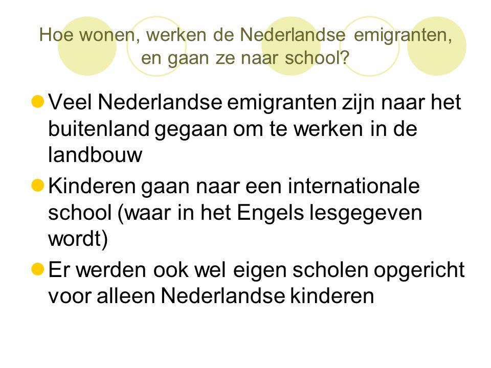 Hoe wonen, werken de Nederlandse emigranten, en gaan ze naar school
