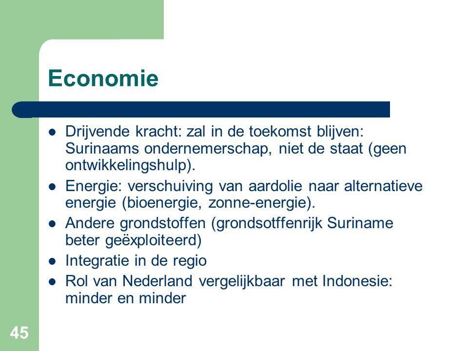 Economie Drijvende kracht: zal in de toekomst blijven: Surinaams ondernemerschap, niet de staat (geen ontwikkelingshulp).