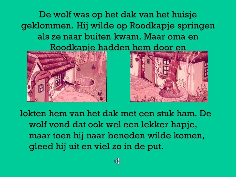 De wolf was op het dak van het huisje geklommen