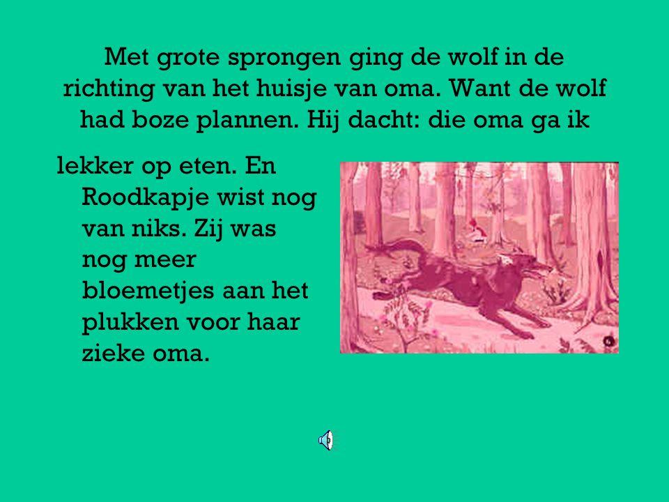 Met grote sprongen ging de wolf in de richting van het huisje van oma