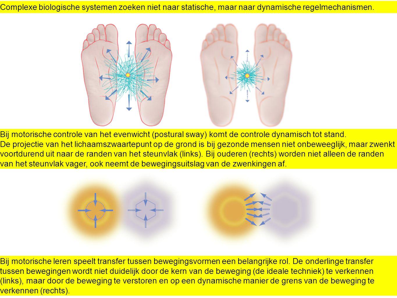 Complexe biologische systemen zoeken niet naar statische, maar naar dynamische regelmechanismen.