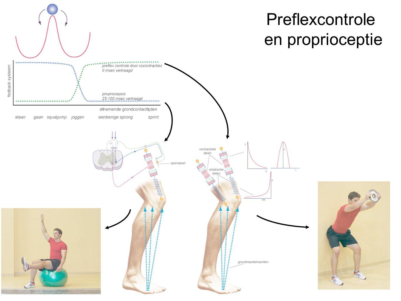 Preflexcontrole en proprioceptie